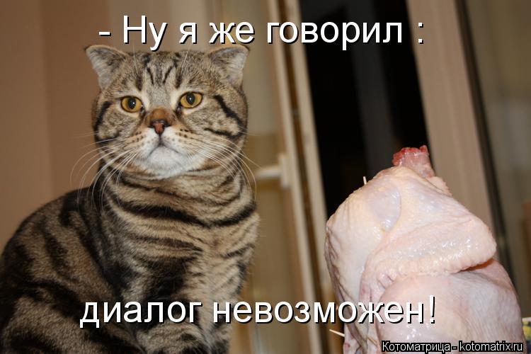 Котоматрица: диалог невозможен! - Ну я же говорил :