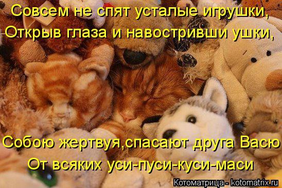 Котоматрица: Совсем не спят усталые игрушки, Открыв глаза и навостривши ушки, Собою жертвуя,спасают друга Васю От всяких уси-пуси-куси-маси