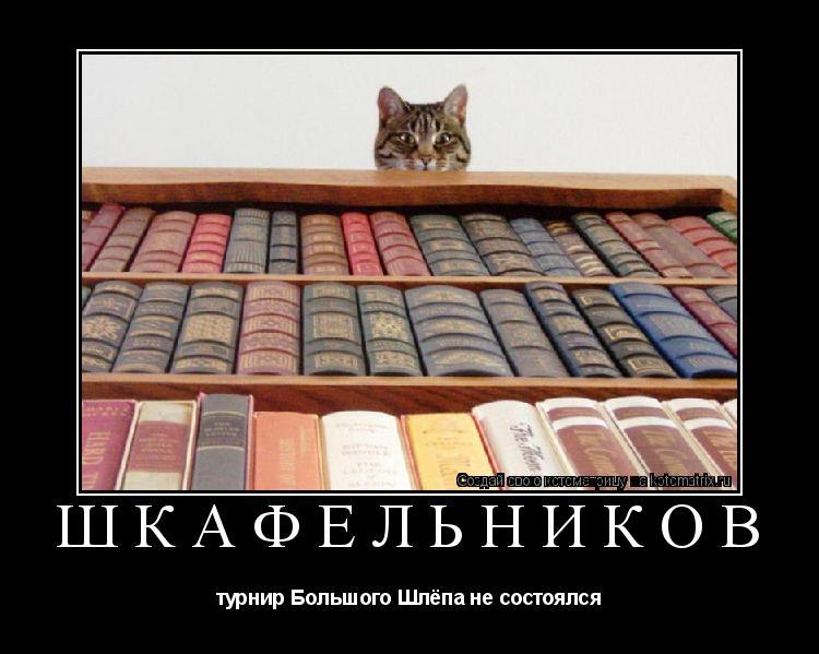 Котоматрица: ШКАФЕЛЬНИКОВ турнир Большого Шлёпа не состоялся
