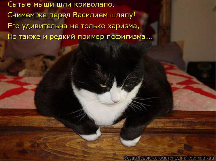 Котоматрица: Сытые мыши шли криволапо. Снимем же перед Василием шляпу! Его удивительна не только харизма, Но также и редкий пример пофигизма...