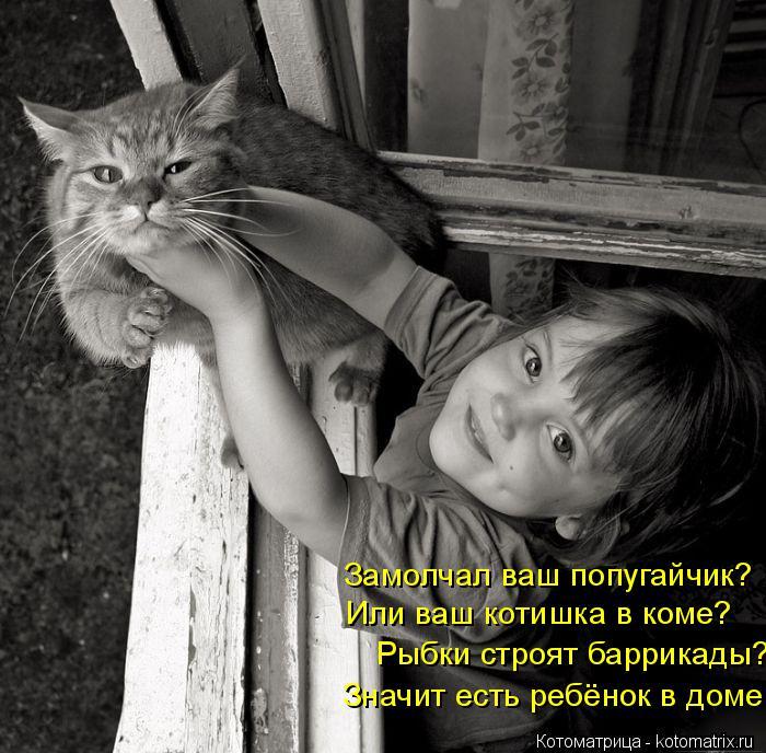 Котоматрица: Замолчал ваш попугайчик? Или ваш котишка в коме? Рыбки строят баррикады? Значит есть ребёнок в доме.