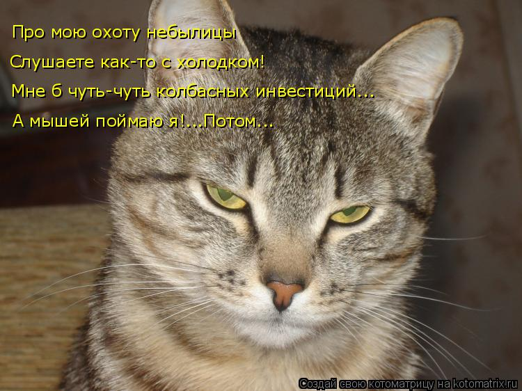 Котоматрица: Про мою охоту небылицы Слушаете как-то с холодком! Мне б чуть-чуть колбасных инвестиций... А мышей поймаю я!...Потом...