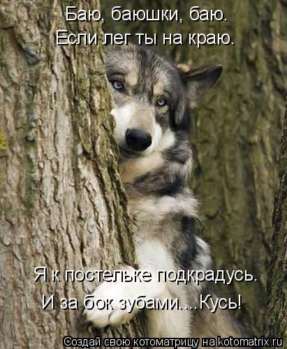 http://kotomatrix.ru/images/lolz/2016/11/11/kotomatritsa_ai.jpg