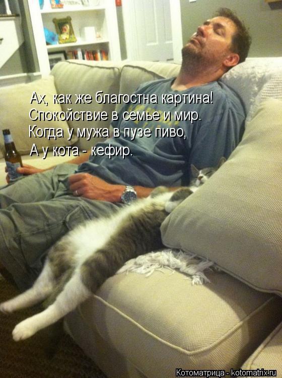 Котоматрица: Ах, как же благостна картина! Спокойствие в семье и мир. Когда у мужа в пузе пиво, А у кота - кефир.