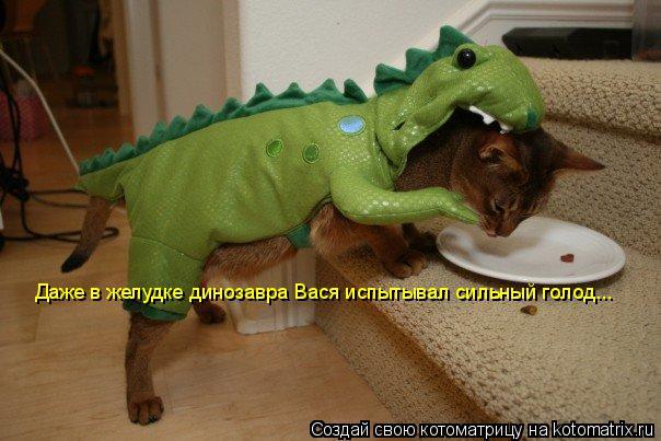 Котоматрица: Даже в желудке динозавра Вася испытывал сильный голод...