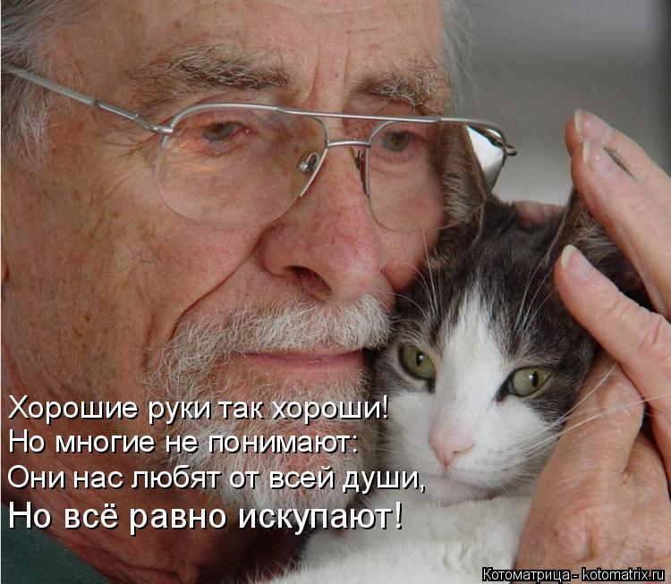 Котоматрица: Хорошие руки так хороши! Но многие не понимают: Но многие не понимают: Они нас любят от всей души, Но всё равно искупают!