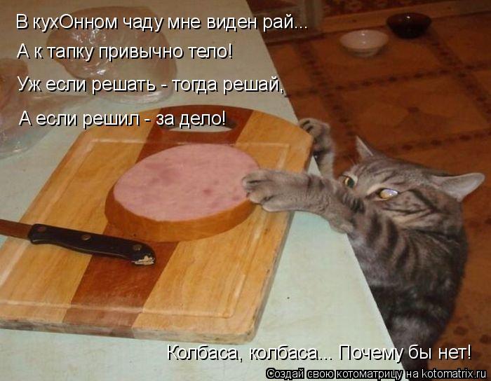 Котоматрица: В кухОнном чаду мне виден рай... А к тапку привычно тело! Уж если решать - тогда решай, А если решил - за дело! Колбаса, колбаса... Почему бы нет!