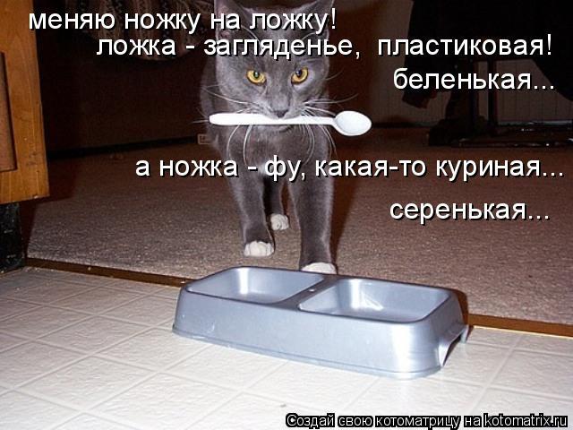 Котоматрица: меняю ножку на ложку! ложка - загляденье,  пластиковая! а ножка - фу, какая-то куриная... беленькая... серенькая...