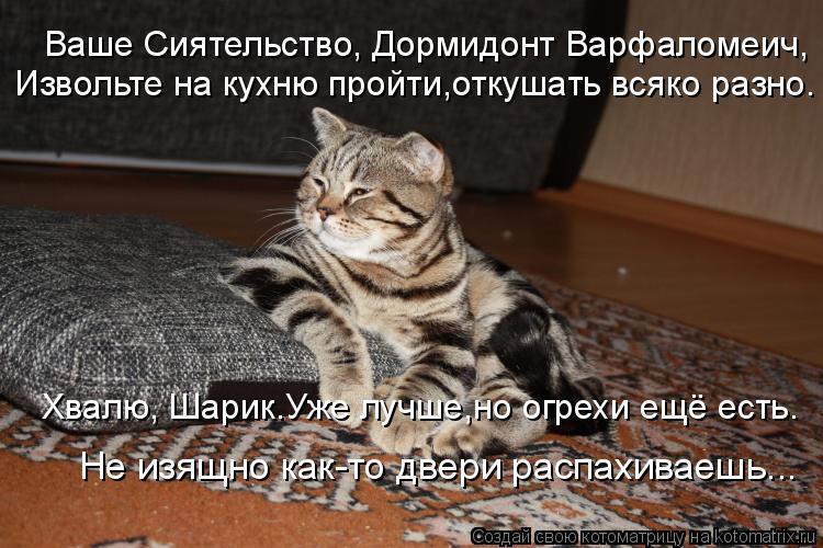Котоматрица: Ваше Сиятельство, Дормидонт Варфаломеич, Извольте на кухню пройти,откушать всяко разно. Хвалю, Шарик.Уже лучше,но огрехи ещё есть. Не изящно