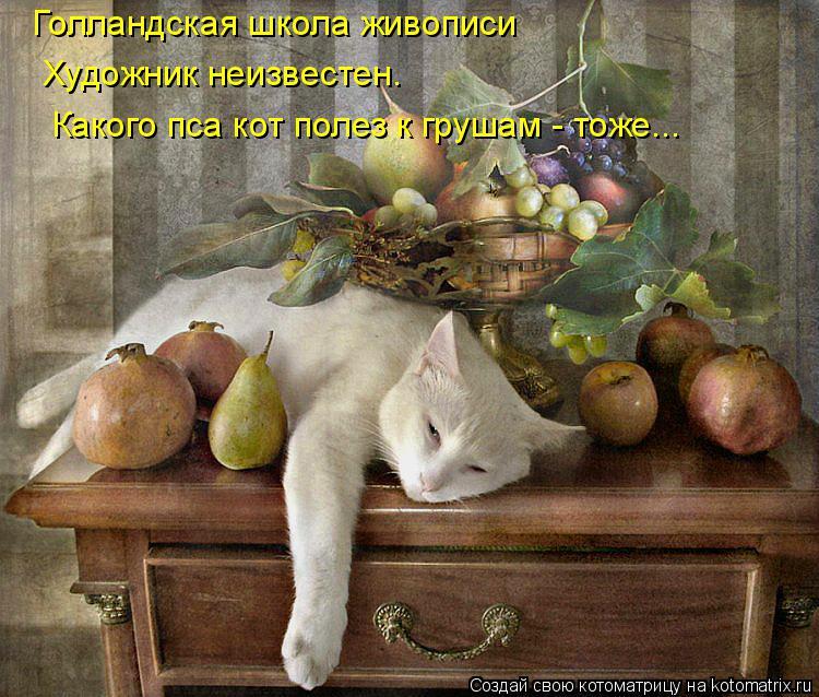 Котоматрица: Голландская школа живописи Художник неизвестен. Какого пса кот полез к грушам - тоже...