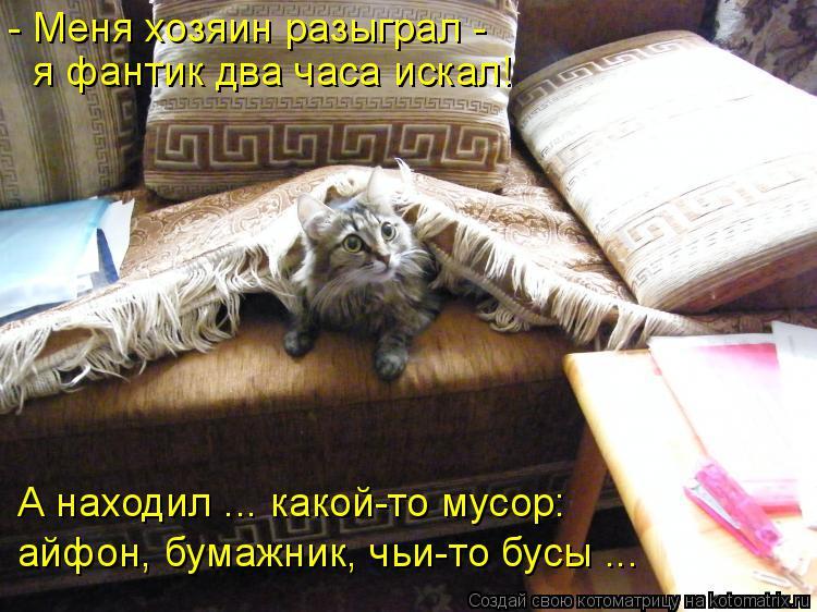 Котоматрица: - Меня хозяин разыграл - я фантик два часа искал! А находил ... какой-то мусор: айфон, бумажник, чьи-то бусы ...
