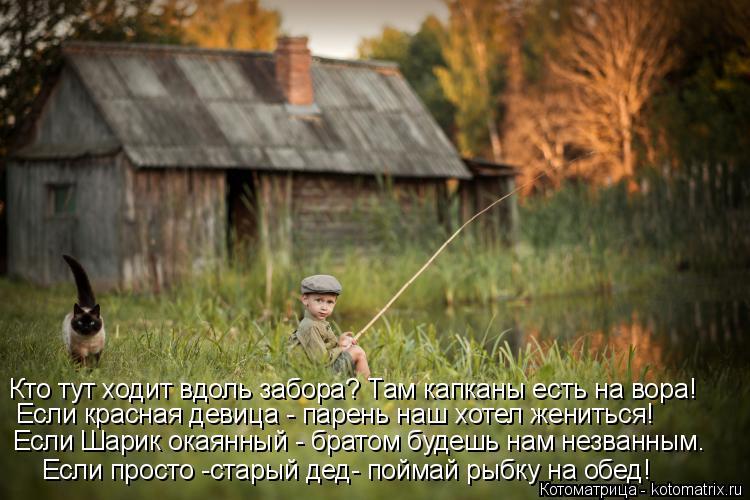 Котоматрица: Если просто -старый дед- поймай рыбку на обед! Если Шарик окаянный - братом будешь нам незванным. Кто тут ходит вдоль забора? Там капканы есть