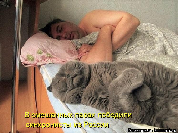 Котоматрица: В смешанных парах победили синхронисты из России