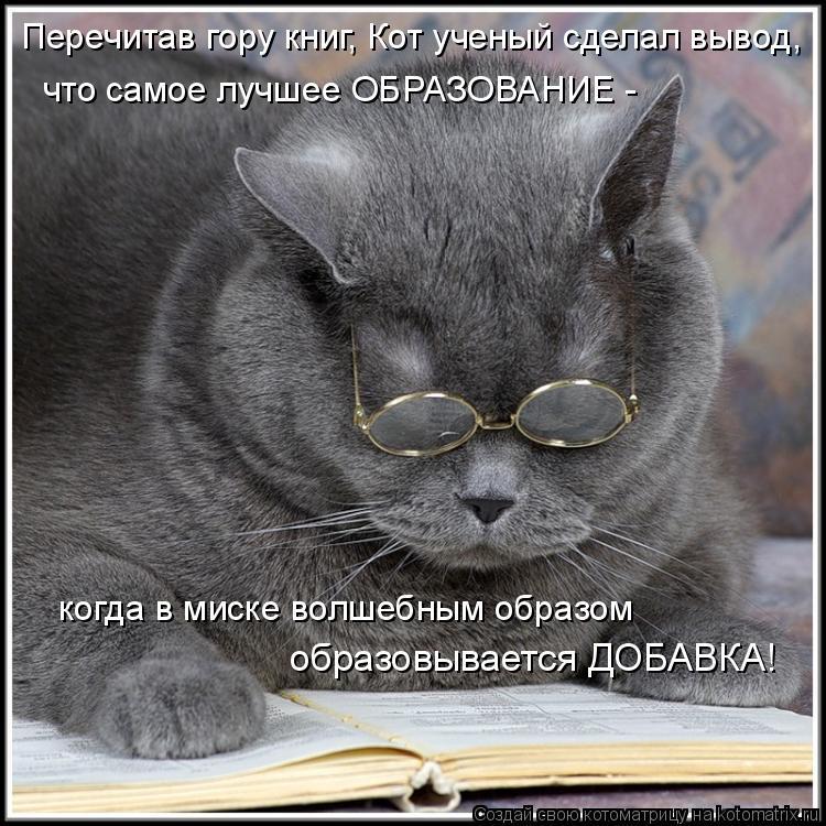 Котоматрица: Перечитав гору книг, Кот ученый сделал вывод, что самое лучшее ОБРАЗОВАНИЕ -    образовывается ДОБАВКА! когда в миске волшебным образом