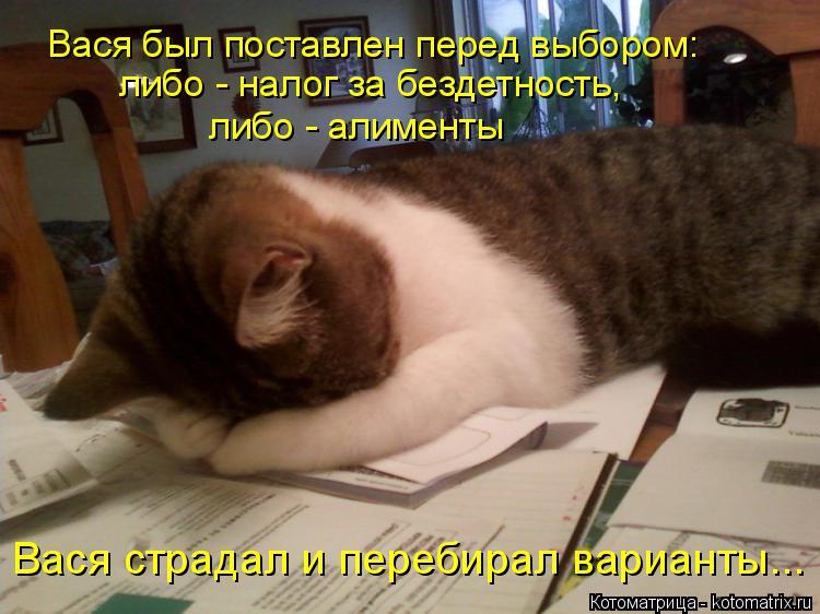 Котоматрица: Вася был поставлен перед выбором: либо - налог за бездетность, либо - алименты Вася страдал и перебирал варианты...
