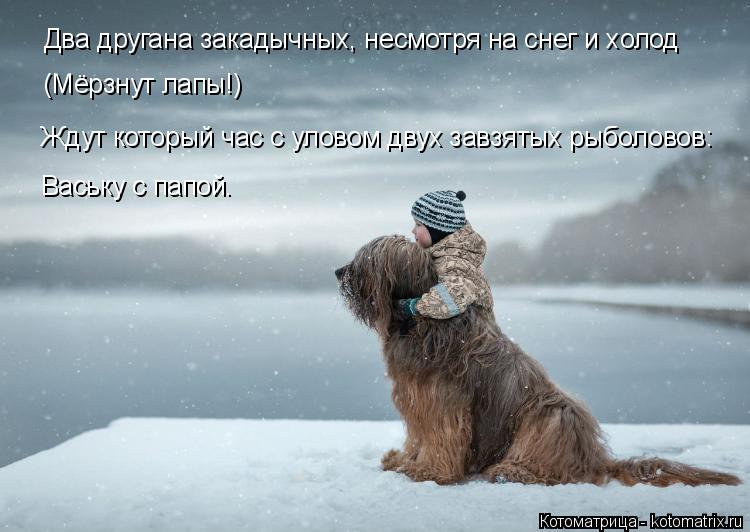 Котоматрица: Ждут который час с уловом двух завзятых рыболовов: Ваську с папой. Два другана закадычных, несмотря на снег и холод (Мёрзнут лапы!)