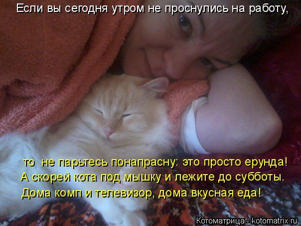 Котоматрица: Если вы сегодня утром не проснулись на работу,  то  не парьтесь понапрасну: это просто ерунда! А скорей кота под мышку и лежите до субботы. До