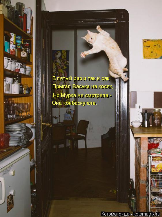 Котоматрица: В пятый раз и так и сяк Прыгал Васька на косяк, Но Мурка не смотрела - Она колбаску ела.