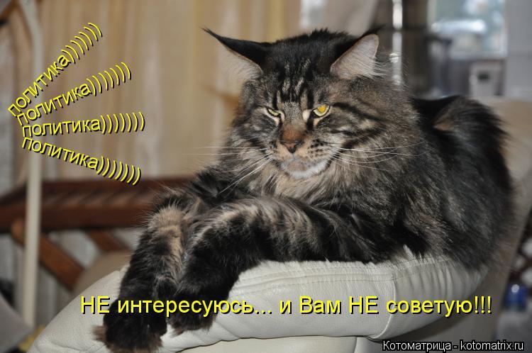 Котоматрица: НЕ интересуюсь... и Вам НЕ советую!!! политика))))))) политика))))))) политика))))))) политика)))))))