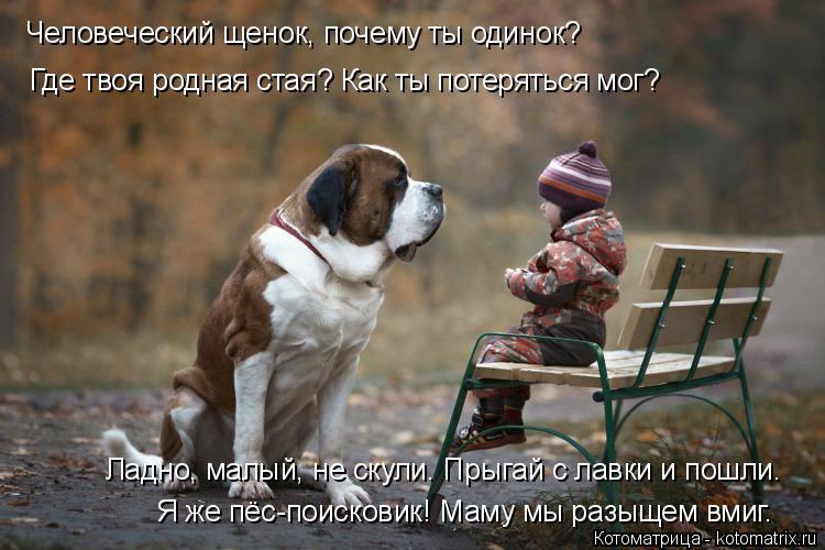Котоматрица: Человеческий щенок, почему ты одинок? Где твоя родная стая? Как ты потеряться мог? Ладно, малый, не скули. Прыгай с лавки и пошли. Я же пёс-поис