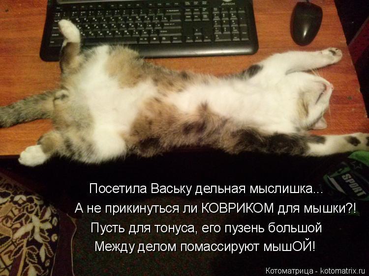 Котоматрица: Посетила Ваську дельная мыслишка... А не прикинуться ли КОВРИКОМ для мышки?!  Пусть для тонуса, его пузень большой Между делом помассируют мы