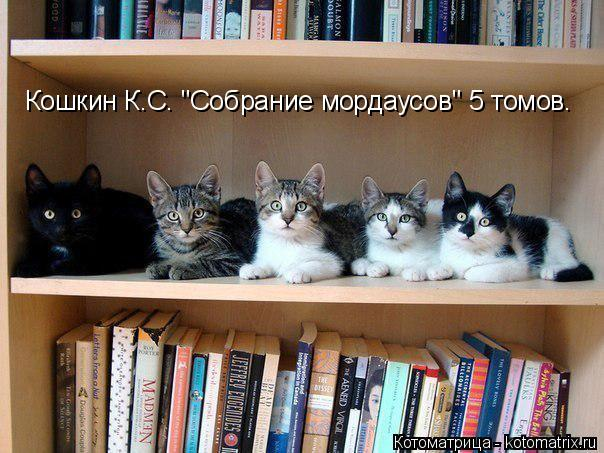 "Котоматрица: Кошкин К.С. ""Собрание мордаусов"" 5 томов."