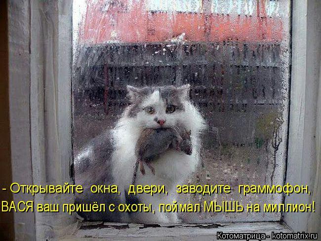 Котоматрица: - Открывайте  окна,  двери,  заводите  граммофон,  ВАСЯ ваш пришёл с охоты, поймал МЫШЬ на миллион!
