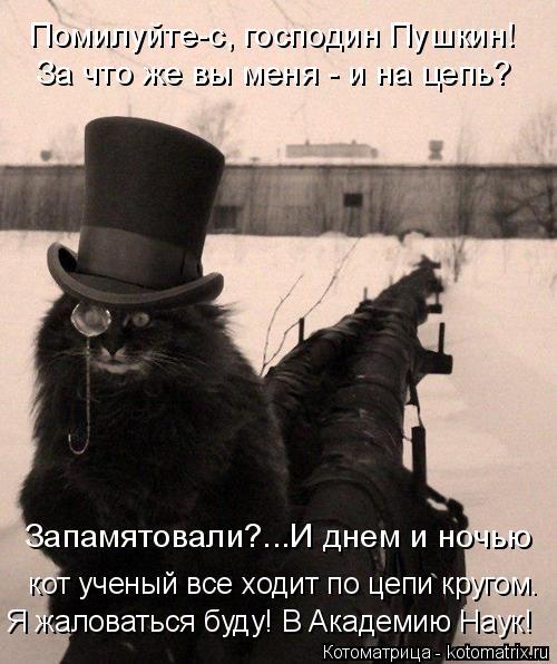 Котоматрица: Помилуйте-с, господин Пушкин! За что же вы меня - и на цепь?  кот ученый все ходит по цепи кругом. Запамятовали?...И днем и ночью Я жаловаться бу