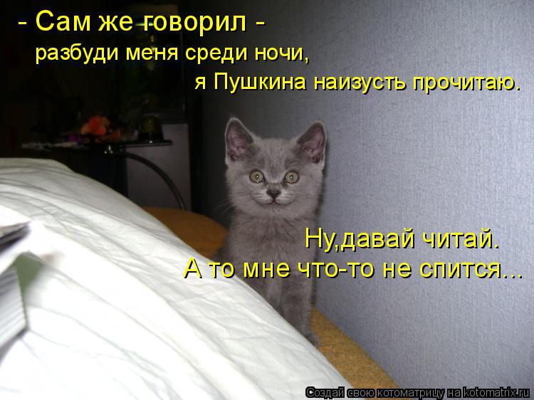Котоматрица: - Сам же говорил - разбуди меня среди ночи, я Пушкина наизусть прочитаю. А то мне что-то не спится... Ну,давай читай.