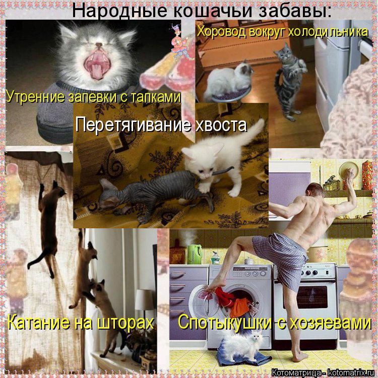 Котоматрица: Народные кошачьи забавы: Хоровод вокруг холодильника Утренние запевки с тапками Перетягивание хвоста Катание на шторах     Спотыкушки с хо