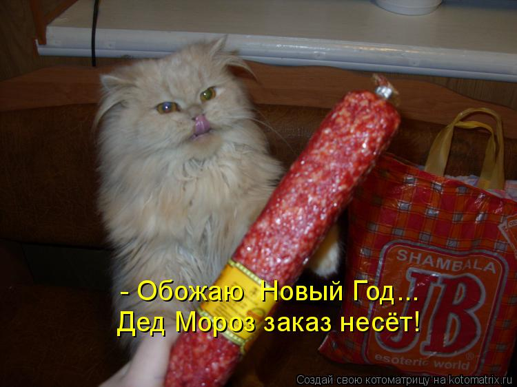 Котоматрица: - Обожаю  Новый Год... Дед Мороз заказ несёт!