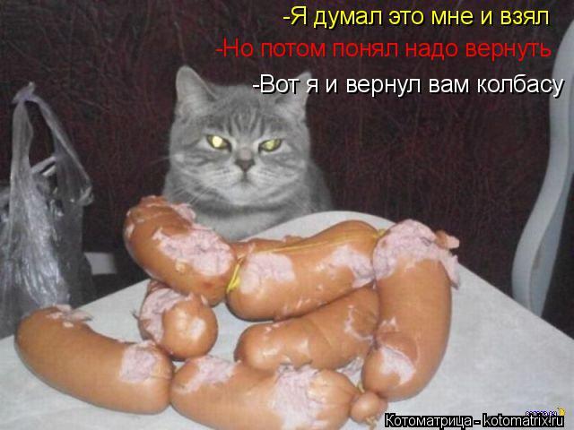 Котоматрица: -Но потом понял надо вернуть -Я думал это мне и взял -Вот я и вернул вам колбасу