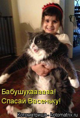 Котоматрица: Бабушукаааааа!  Спасай Васеньку!