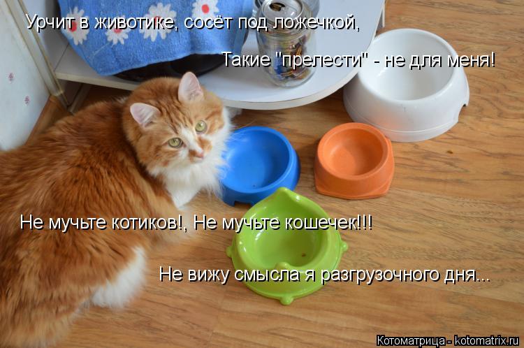 soset-pod-lozhechkoy-toshnit-kushat-hochetsya