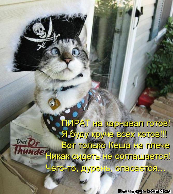 Котоматрица: ПИРАТ на карнавал готов! Я буду круче всех котов!!! Вот только Кеша на плече  Никак сидеть не соглашается! Чего-то, дурень, опасается…