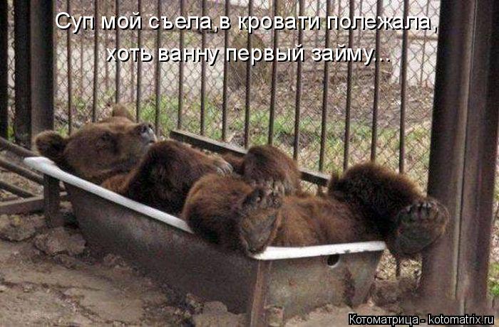 Котоматрица: Суп мой съела,в кровати полежала, хоть ванну первый займу...