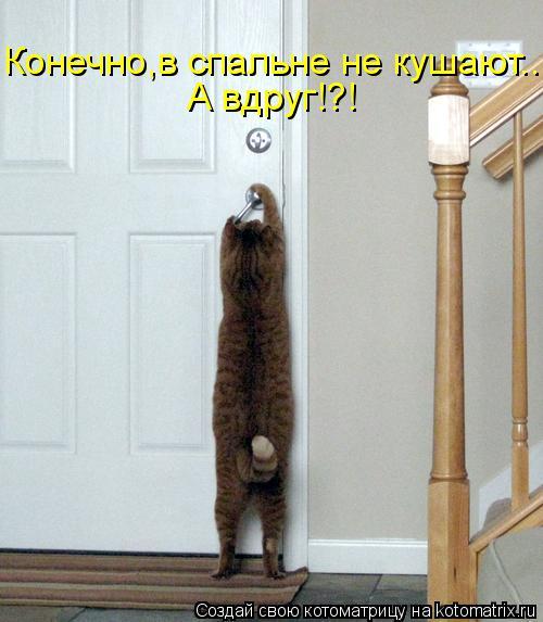 Котоматрица: Конечно,в спальне не кушают... А вдруг!?!