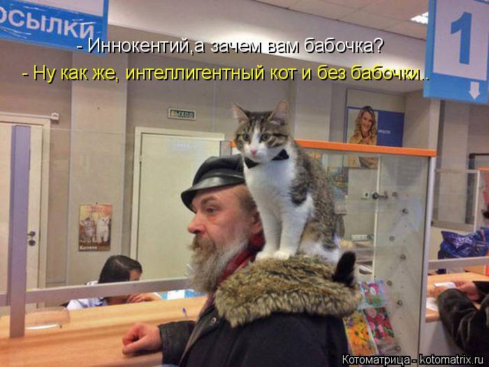 Котоматрица: - Иннокентий,а зачем вам бабочка? - Ну как же, интеллигентный кот и без бабочки..