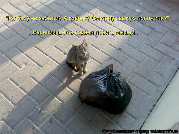 """Котоматрица: """"Колбасу не забыли? А коврик? Сметану свежую положили?"""" ...Василий шёл в подвал ловить мышей..."""