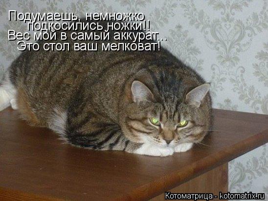 Котоматрица: Подумаешь, немножко подкосились ножки!! Вес мой в самый аккурат... Это стол ваш мелковат!