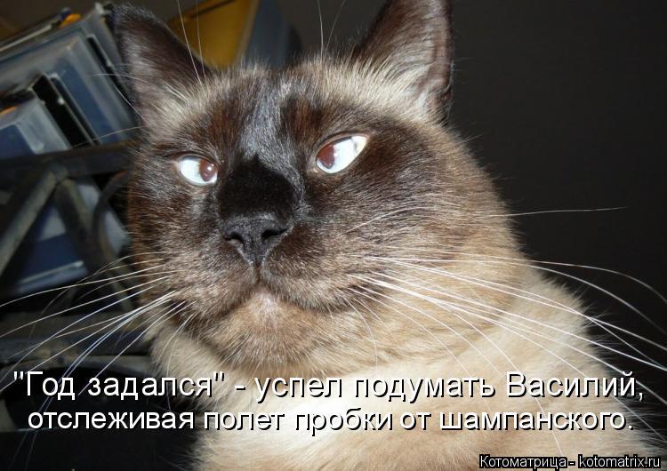 """Котоматрица: """"Год задался"""" - успел подумать Василий, отслеживая полет пробки от шампанского."""