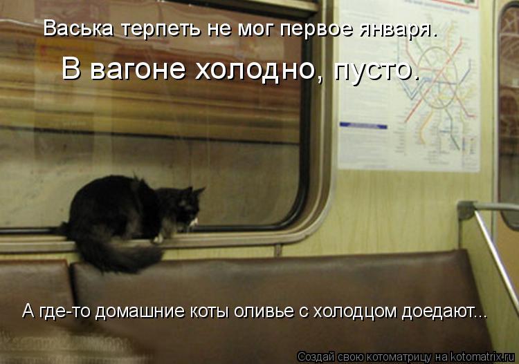 Котоматрица: Васька терпеть не мог первое января. В вагоне холодно, пусто. А где-то домашние коты оливье с холодцом доедают...