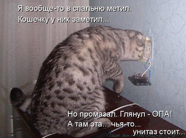 Котоматрица: Я вообще-то в спальню метил. Кошечку у них заметил... Но промазал. Глянул - ОПА! А там эта... чья-то... унитаз стоит...