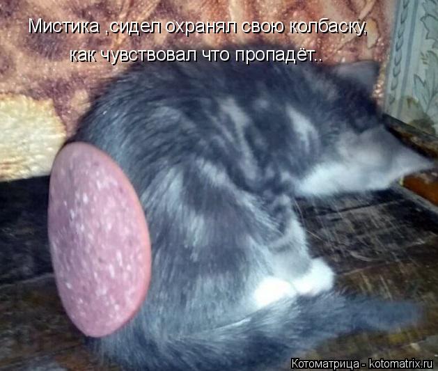 Котоматрица: Мистика ,сидел охранял свою колбаску, как чувствовал что пропадёт..