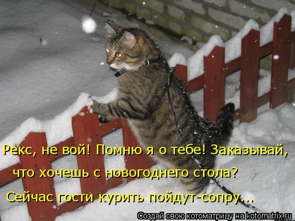 Котоматрица: Рекс, не вой! Помню я о тебе! Заказывай, Сейчас гости курить пойдут-сопру... что хочешь с новогоднего стола?