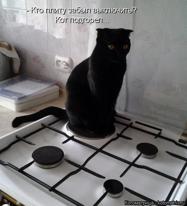 Котоматрица: - Кто плиту забыл выключить? Кот подгорел...