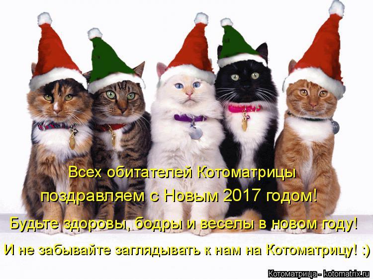 Котоматрица: Всех обитателей Котоматрицы  поздравляем с Новым 2017 годом! Будьте здоровы, бодры и веселы в новом году! И не забывайте заглядывать к нам на К