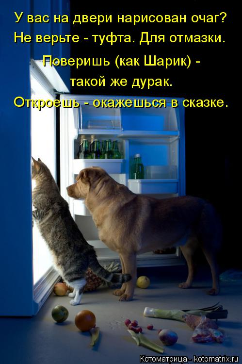 Котоматрица: У вас на двери нарисован очаг? Не верьте - туфта. Для отмазки. Поверишь (как Шарик) -  такой же дурак. Откроешь - окажешься в сказке.
