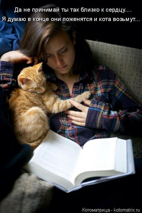 Котоматрица: Да не принимай ты так близко к сердцу.... Я думаю в конце они поженятся и кота возьмут...