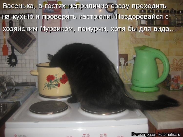 Котоматрица: Васенька, в гостях неприлично сразу проходить  хозяйским Мурзиком, помурчи, хотя бы для вида... на кухню и проверять кастрюли! Поздоровайся с